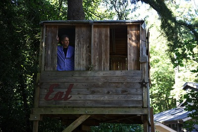 Scott Sparling Treehouse Writing Spaces
