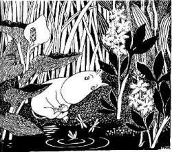 moomin-marsh