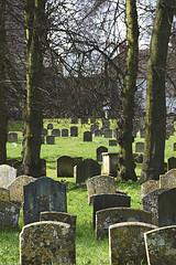 cemetery_Martin Pettitt