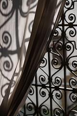 Elena Delbanco window