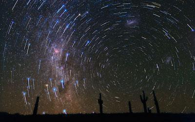 Star Trails over Atacama Desert Cacti Five in bloom may 2015